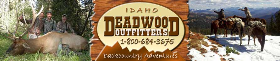 Idaho hunting with Deadwood Outfitters includes Elk Hunting, Deer and Wolf Hunts